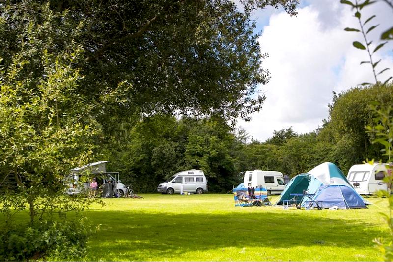 adgestone camping n caravanning club site.png