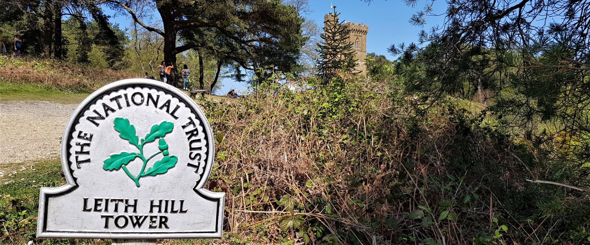 Leith Hill Tower landscape.jpg
