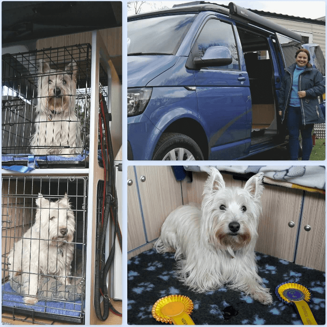 5 Sussex Campervans VW Caledonia LWB dog friendly campervans Borderfest Penny 3.png