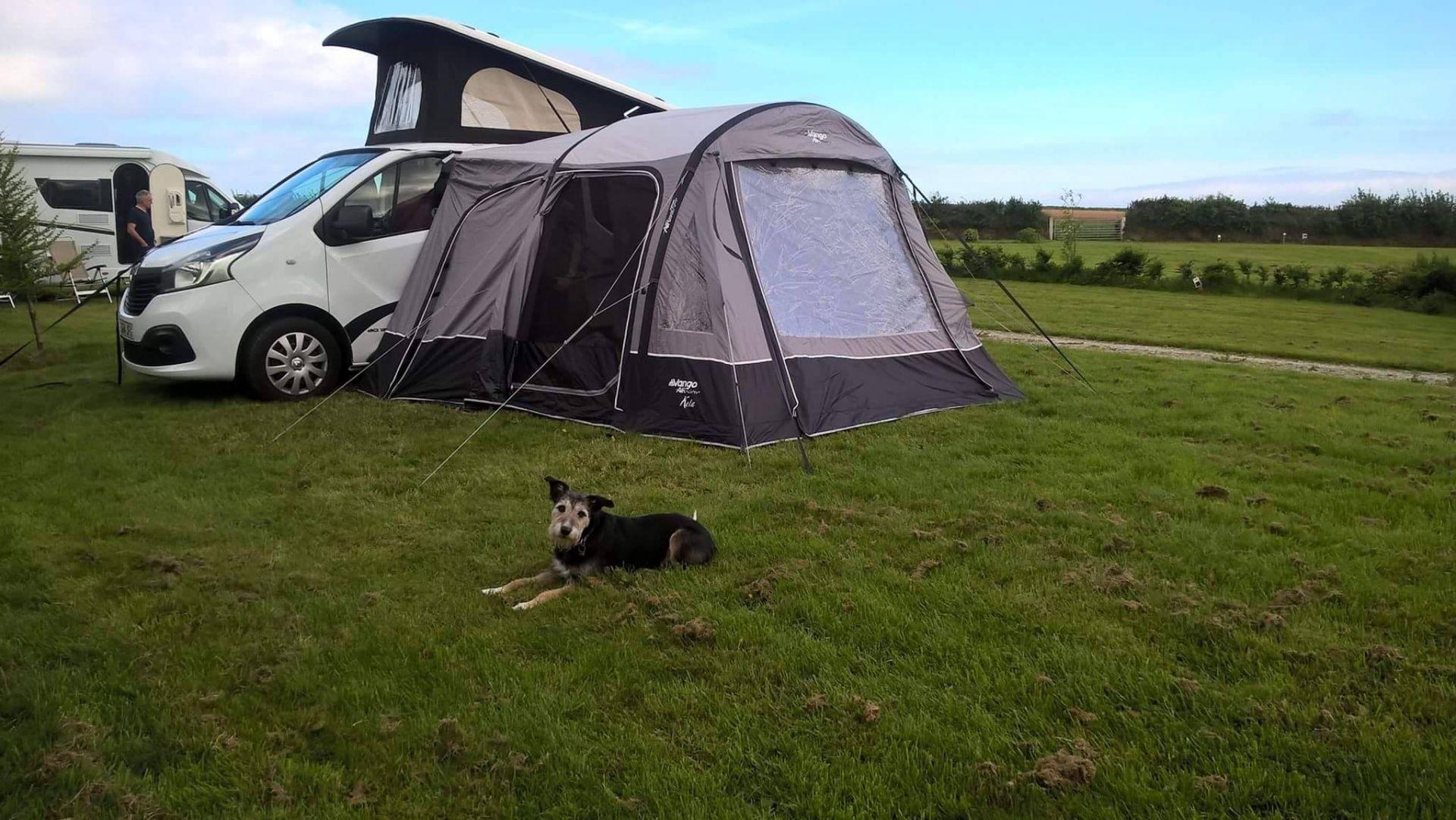 Dog Pebbles Sussex Campervans awning Jeremy N.jpg