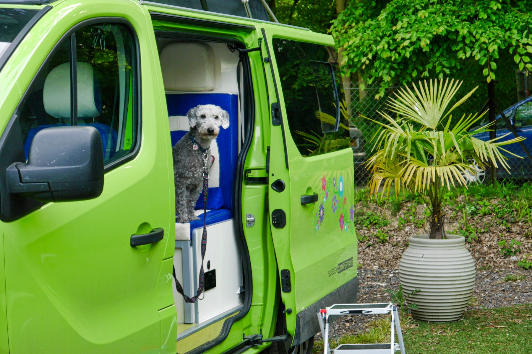 Sussex Campervans for sale holidays with dogs VIPs May 18.JPEG