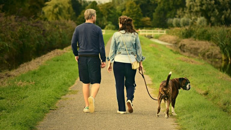 Couple walking dog.jpg