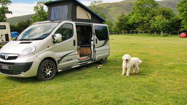 Sussex Campervans Manhattan Dog friendly camper - Alan 2.JPEG